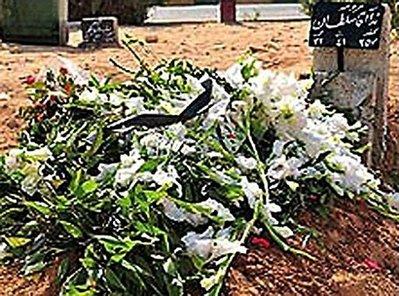 Neda's grave