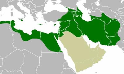 Islam-655