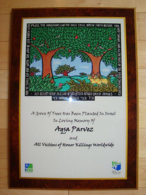 Aqsa plaque