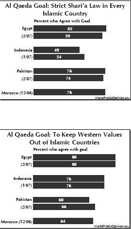 Al qaeda survey