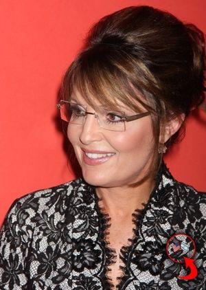 Palin israel