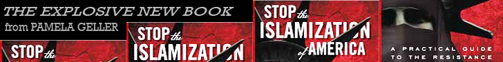 Sioa book banner ad