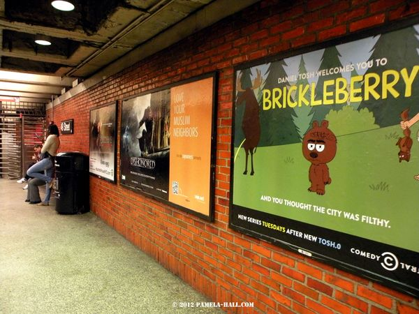 Msulim neighbor brickleberry